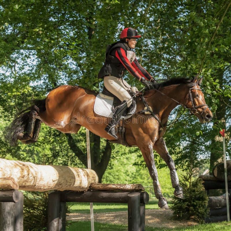 Houghton international horse trials Loretta Joynson riding PSH C. HOUGHTON, NORFOLK/ENGLAND - May 25th 2017: Houghton International Horse Trials 2017 Loretta royalty free stock images