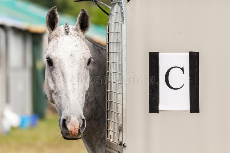 Houghton international horse trials May 2017. HOUGHTON, NORFOLK/ENGLAND - May 28th 2017: Houghton International Horse Trials 2017 Including cross country royalty free stock images