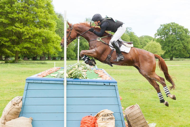 Houghton international horse trials May 2017. HOUGHTON, NORFOLK/ENGLAND - May 28th 2017: Houghton International Horse Trials 2017 Mark Ford riding Hildare Amun stock photography