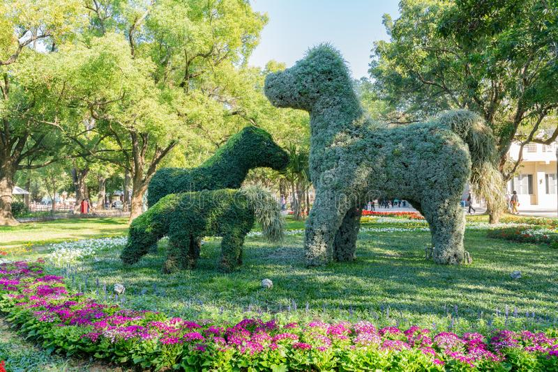 Houli Horse Ranch. of Taichung World Flora Exposition. Taichung, DEC 22: Houli Horse Ranch of Taichung World Flora Exposition on DEC 22, 2018 at Taichung, Taiwan royalty free stock image
