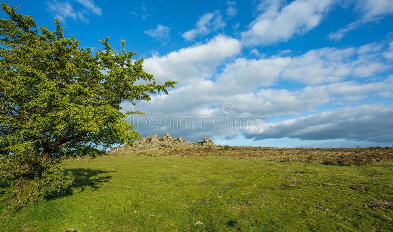 Hound Tor stock images