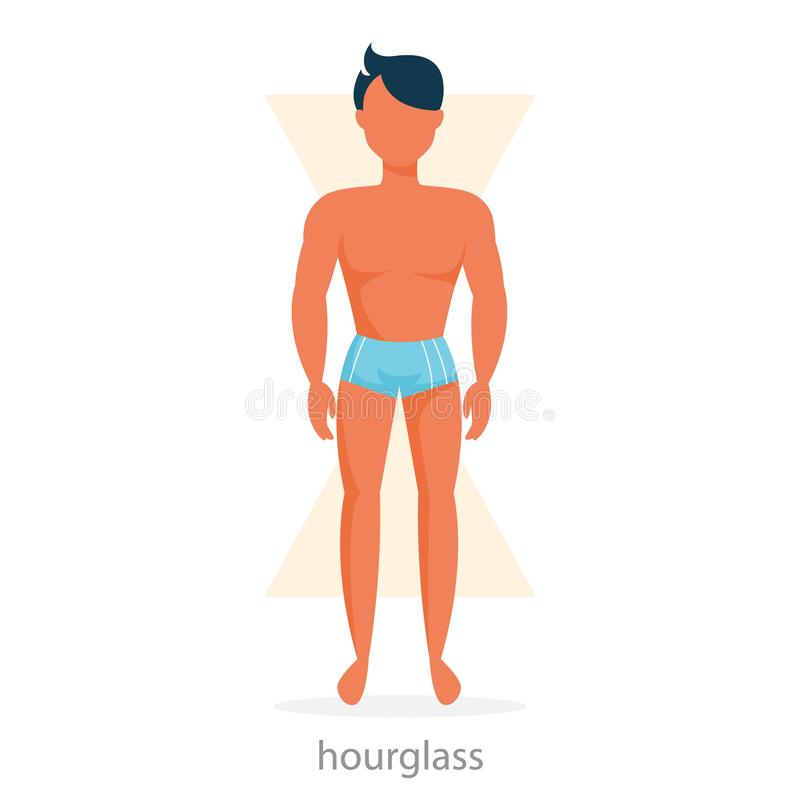 Hourglass body shape. Male character in underwear. Sexy man standing. Thin waist and big shoulders. Isolated vector illustration in cartoon style vector illustration