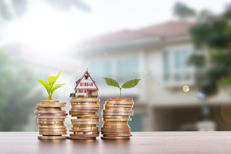 House agent with stack money stock images