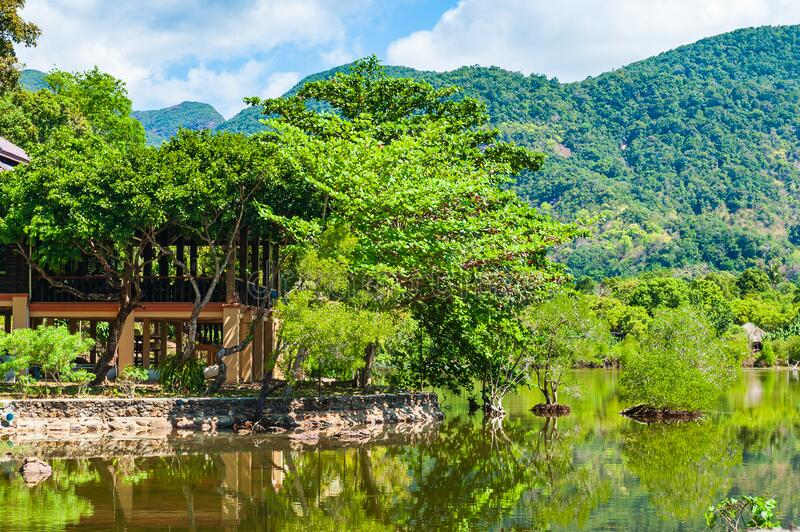 House built on stilts in the lush green tropical forest. royalty free stock images