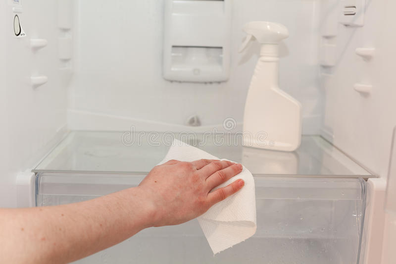 House cleaning - spray bottle with detergents for washing the fridge. The housekeeper wipes the shelves of a clean refrigerator wi. Th a dry napkin. Young woman stock photos