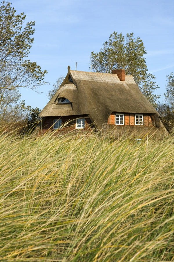 Download House in the dunes stock photo. Image of reed, natural - 9692838