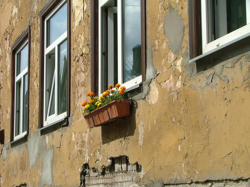 Download House facade stock photo. Image of wall, window, glass - 11303290