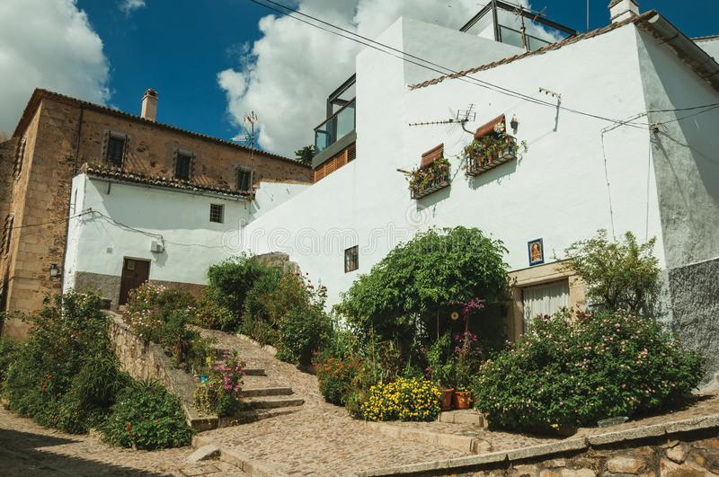 House facade with white walls, stairs, flower pots and plants at Caceres. House facade with white walls, stairs, flower pots and plants in front of cobblestone royalty free stock photos