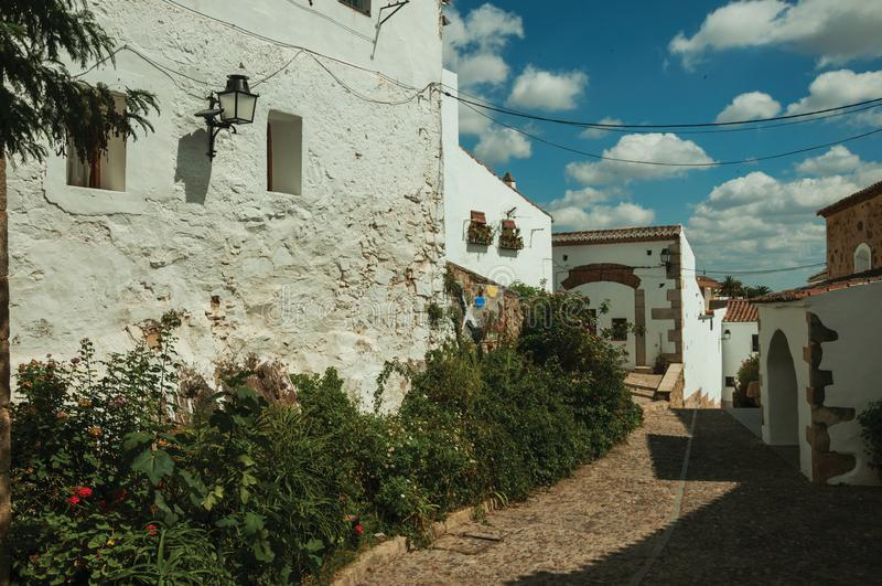 House facade with white walls, stairs, flower pots and plants at Caceres. House facade with white walls, stairs, flower pots and plants in front of cobblestone royalty free stock photography