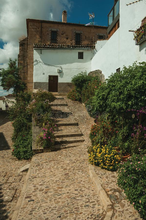House facade with white walls, stairs, flower pots and plants at Caceres. House facade with white walls, stairs, flower pots and plants in front of cobblestone royalty free stock images