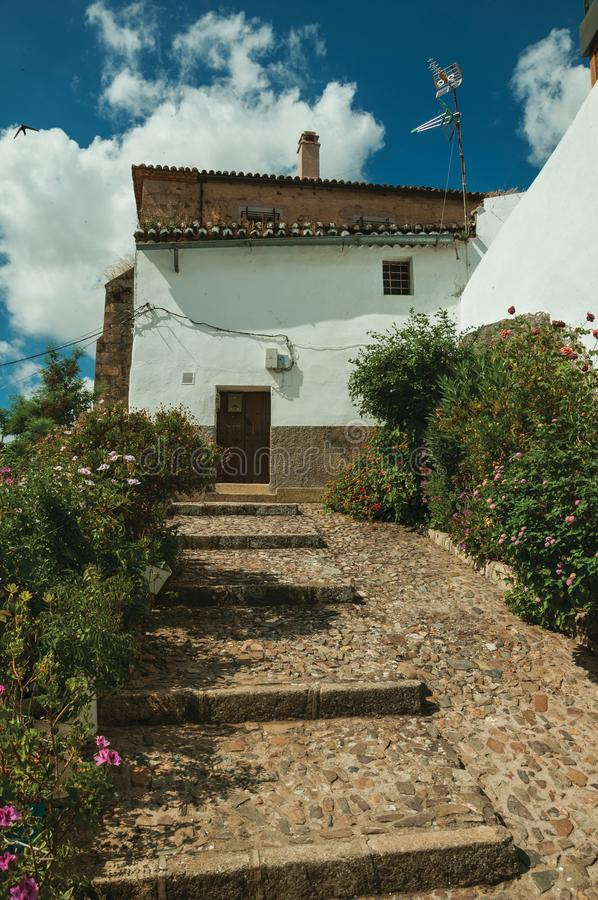 House facade with white walls, stairs, flower pots and plants at Caceres. House facade with white walls, stairs, flower pots and plants in front of cobblestone royalty free stock image