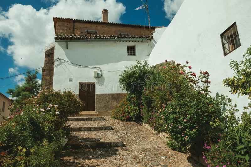 House facade with white walls, stairs, flower pots and plants at Caceres. House facade with white walls, stairs, flower pots and plants in front of cobblestone stock images