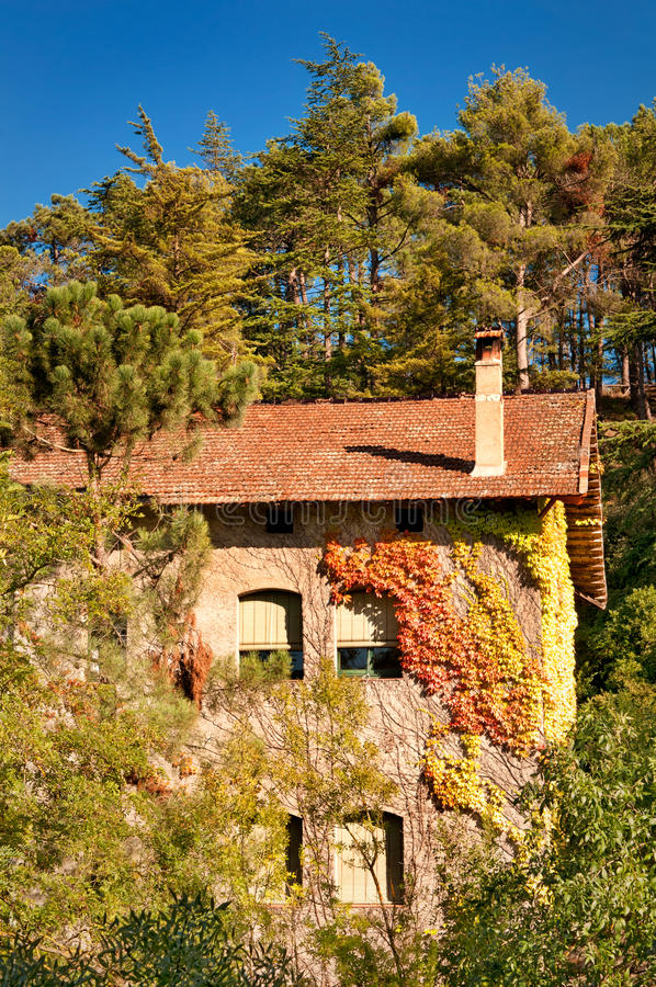 Download House in the forest, Spain stock photo. Image of pine - 22950092