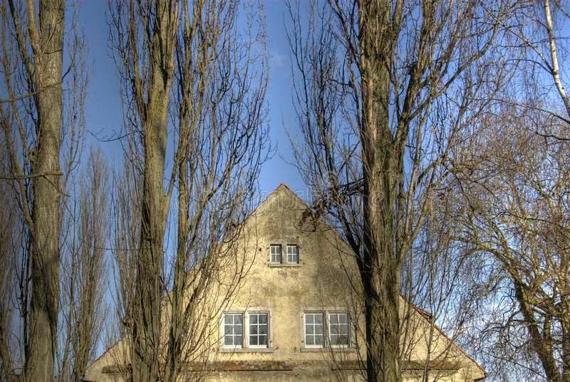 Download House gable and trees stock photo. Image of roof, facade - 8482272