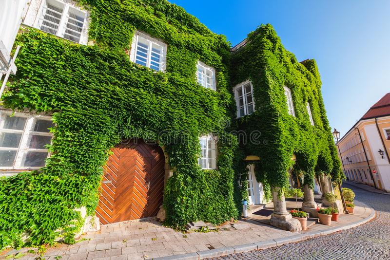 House with ivy on the walls in Mikulov, South Moravia, Czech Republic. The old town of Mikulov, view of the house with ivy on its walls. South Moravia, Czech royalty free stock images