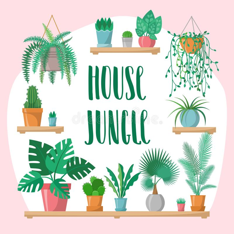 House jungle phrase with home plants collection in flat style, modern calligraphy sign and indoor plants in colorful vector illustration