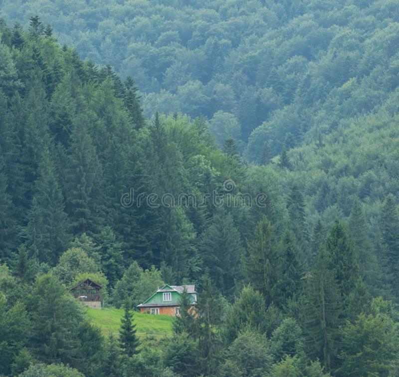 House on the lawn of the Carpathian forest. Alone house on the lawn of the Carpathian forest. Riot of greenery in the summer in the Ukrainian mountains stock photo