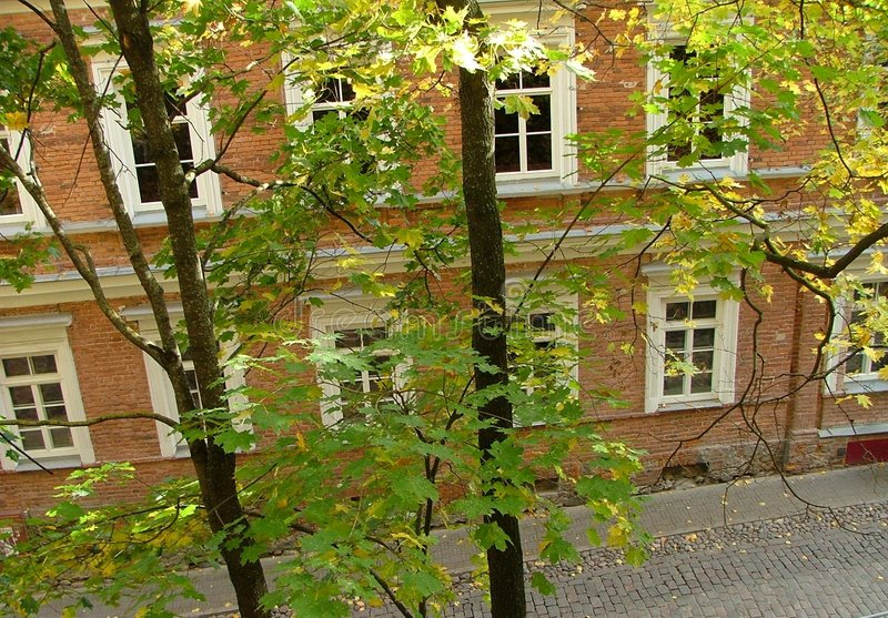 Download House through leaves stock image. Image of branches, road - 139215