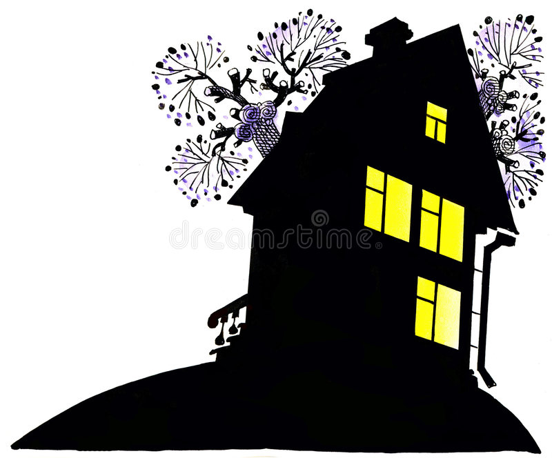The house at night stock photography