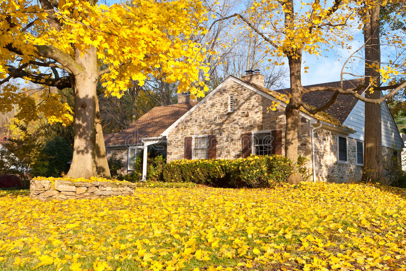 House Philadelphia Yellow Fall Autumn Leaves Tree stock photography