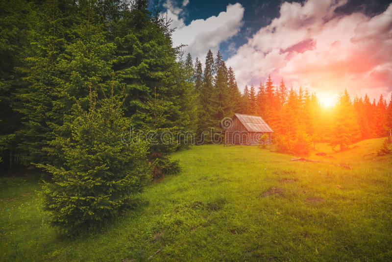 House in the pine forest of Carpathians stock photos