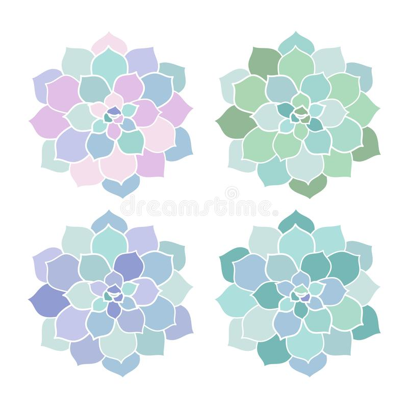 House plants pink purple blue green turquoise pastel succulent s. Candinavian style boho set illustration top view vector royalty free illustration