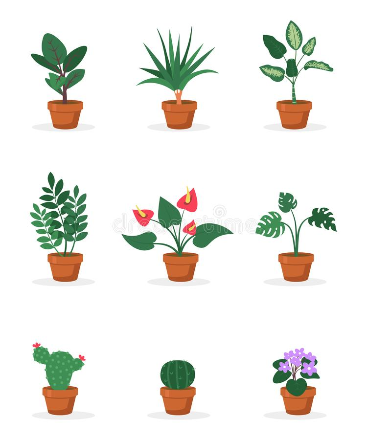 House plants in pots flat vector illustrations set royalty free illustration
