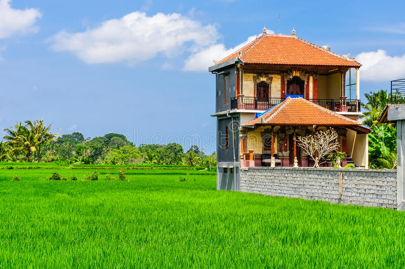 House in rice field in Ubud, Bali royalty free stock photo