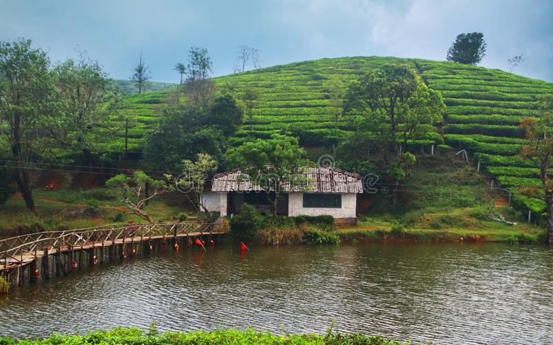 House in river side. A small house in river side, in most famous tourist place vagamon, kerala, india stock photo