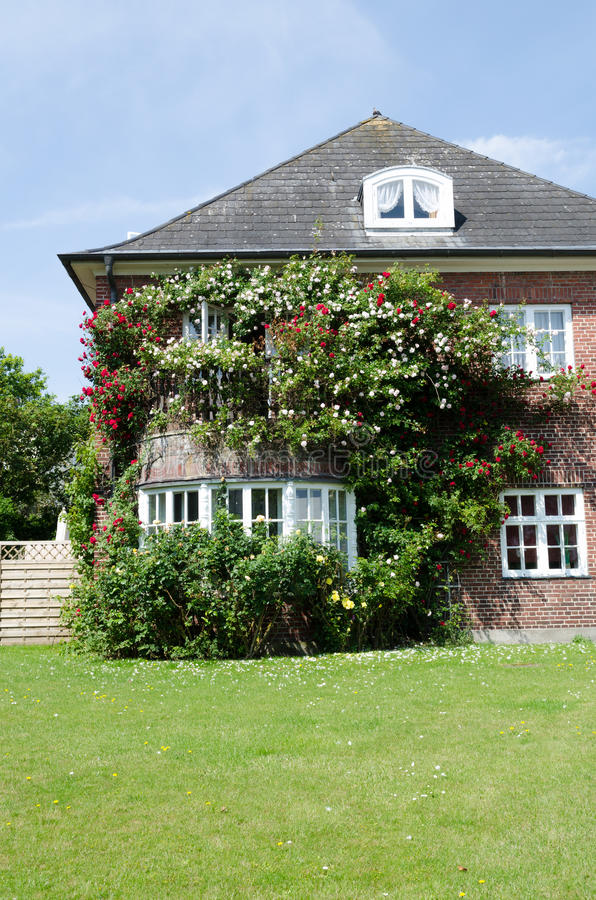 House with roses royalty free stock image