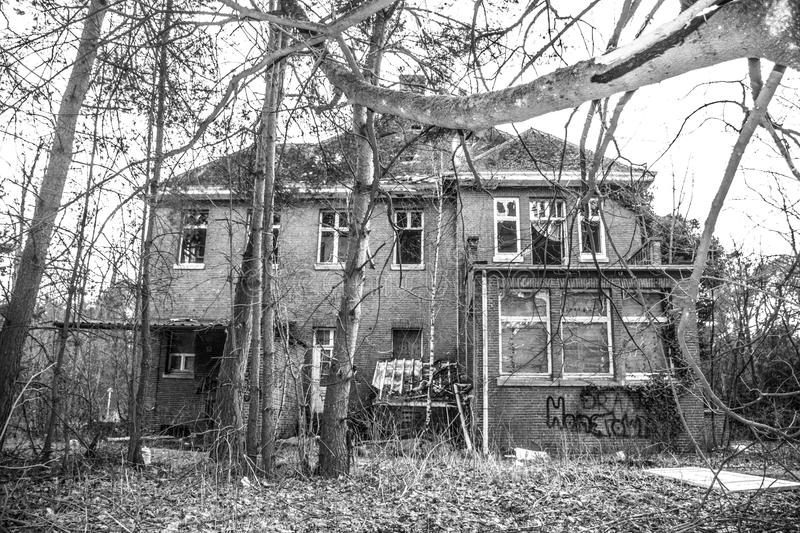 House Surrounded With Trees on Grayscale Photography stock image