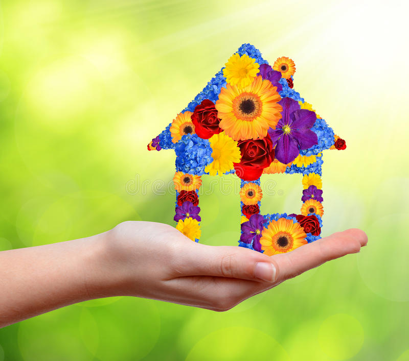 Download House symbol from flowers stock photo. Image of agent - 39239956
