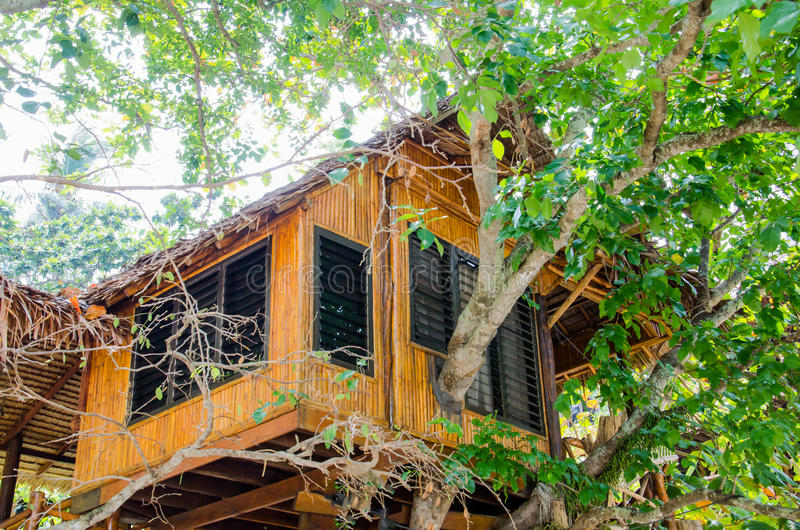 House on the tree in the phi phi island. It is hotel. stock photos