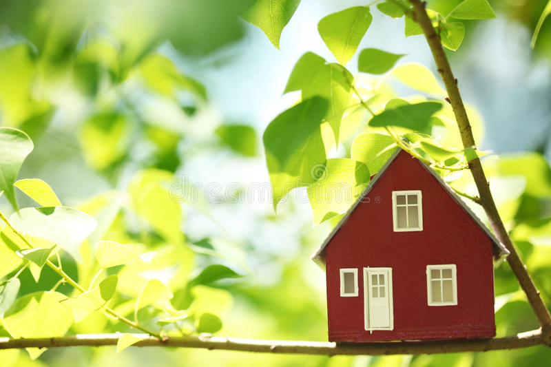 House In The Trees Stock Photography