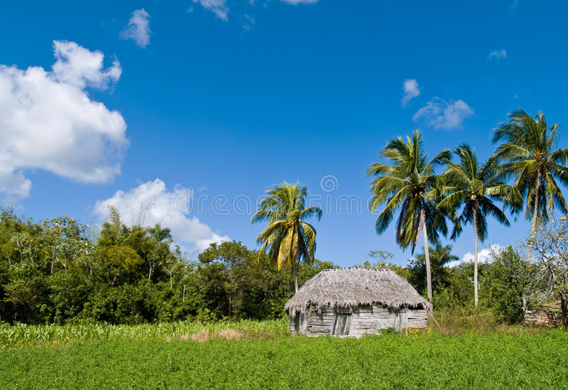 Download House In Tropical Landscape Stock Image - Image: 8762129