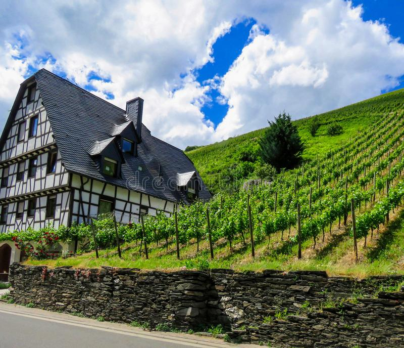 House and vineyard royalty free stock photography