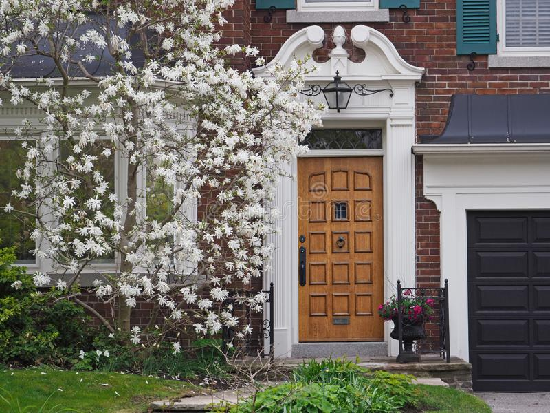 House with white magnolia tree  in bloom. Elegant wooden front door of house with white magnolia tree  in bloom stock photos