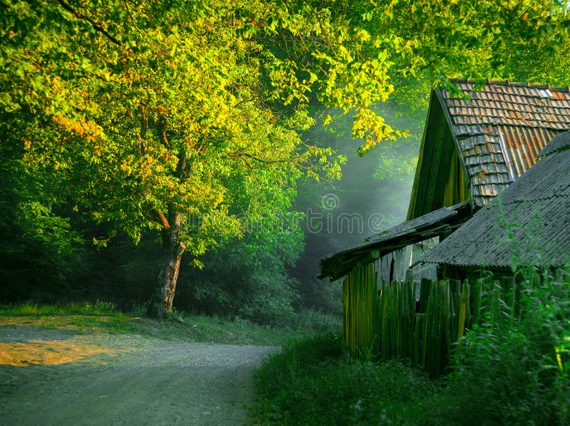 Download House in the woods stock image. Image of scenic, woods - 4066169