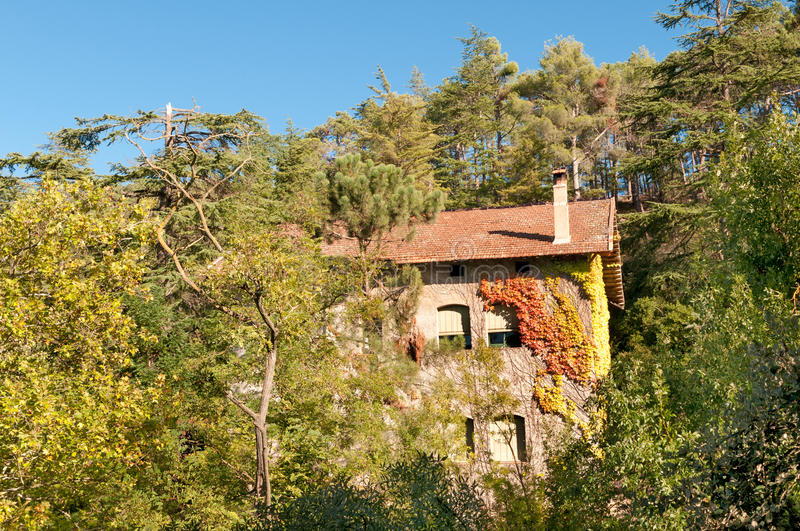 Download House in the woods, Spain stock photo. Image of roof - 22950100