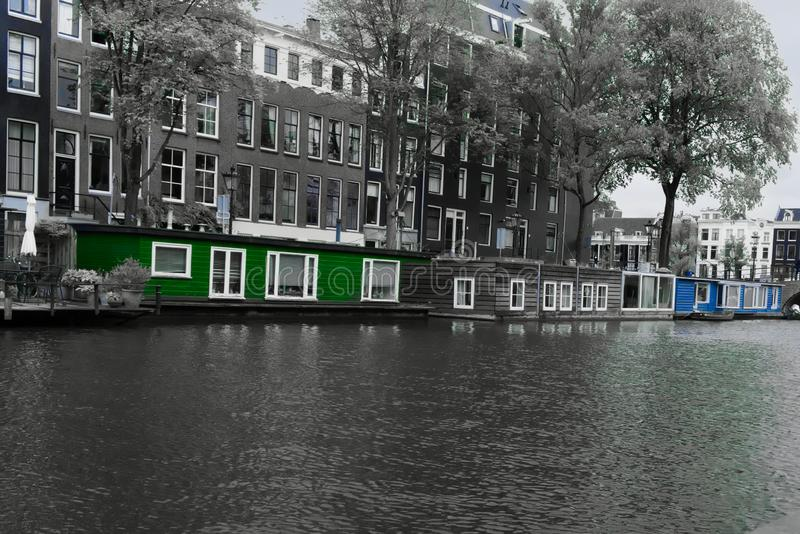Houseboats in the nieuwe prinsengracht amsterdam. In black and white with blue and green saturated to stay in color stock photo