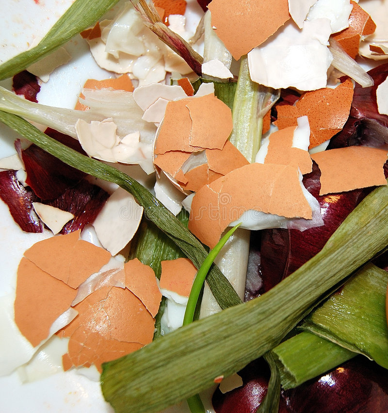 Download Household refuse stock photo. Image of refuse, vegetables - 3032164