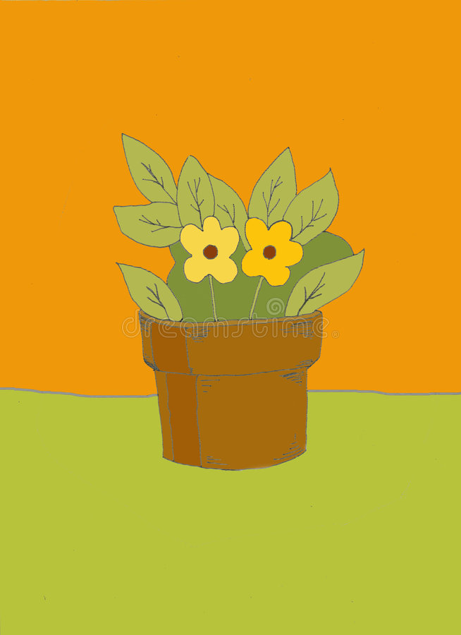Houseplant stock illustration