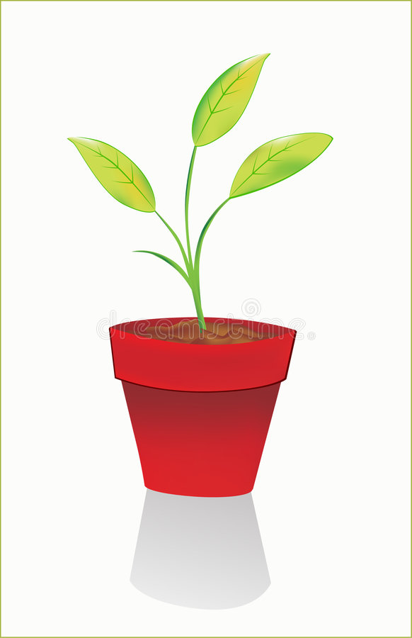 Download Houseplant stock vector. Image of green, concept, environment - 9320097