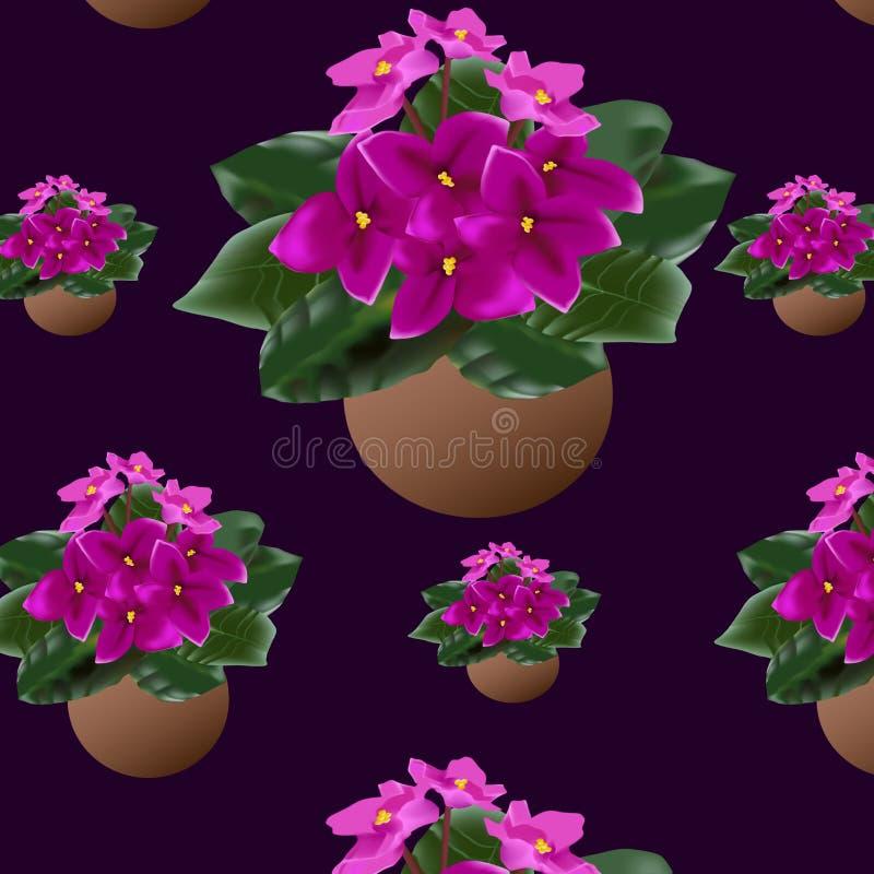 Houseplant in einem Muster auf einem farbigen Hintergrund lizenzfreies stockfoto