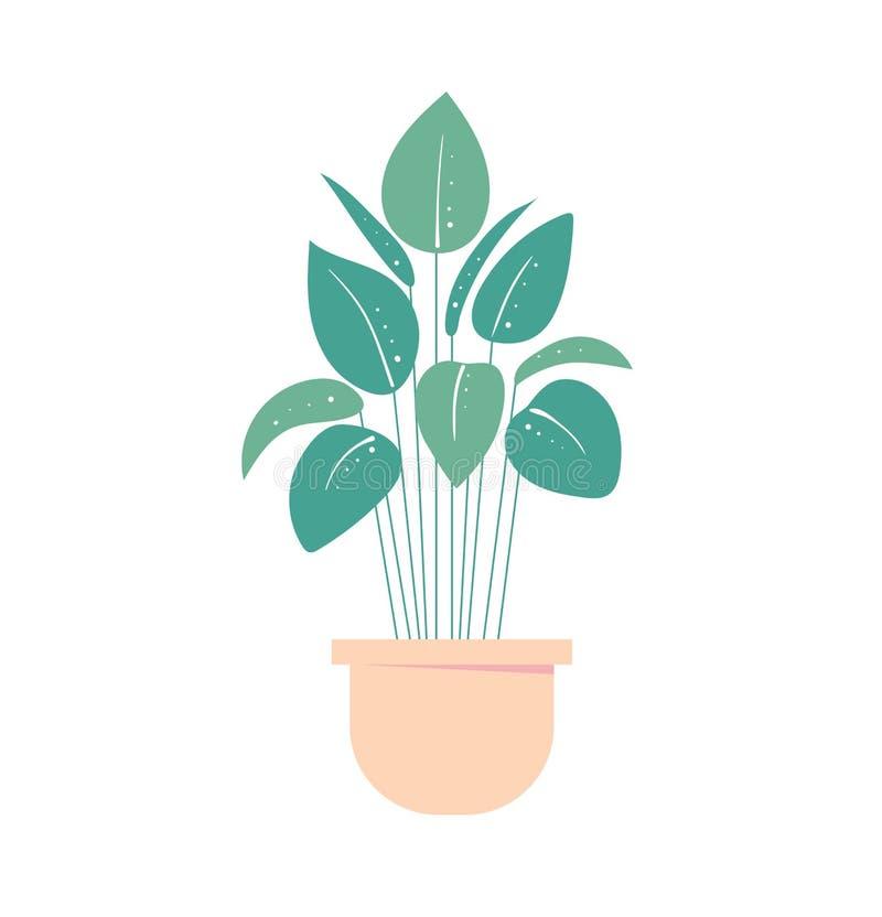 Houseplant i kruka Isolerad blomkruka Home växt stock illustrationer