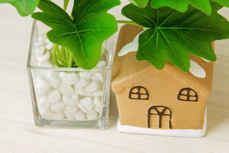 Houseplant in pot, toy house on white wooden table. Houseplant in pot, toy house on white wooden table stock photos