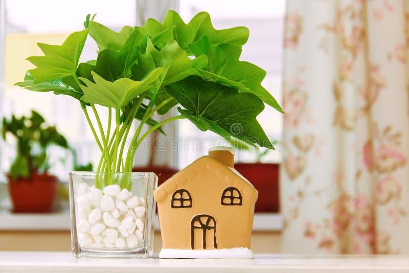 Houseplant in pot, toy house on white wooden table. Houseplant in pot, toy house on white wooden table stock photo