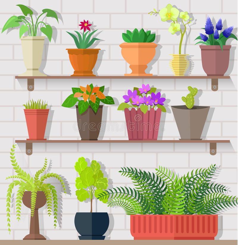 Houseplant Set Design Flat Concept royalty free illustration