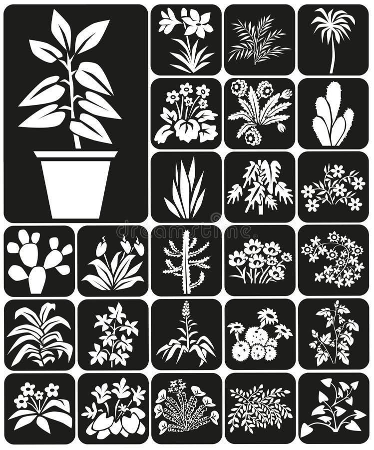 houseplants ilustracja wektor