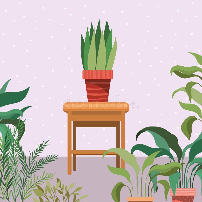 Houseplants in de houten scène van de stoeltuin royalty-vrije illustratie
